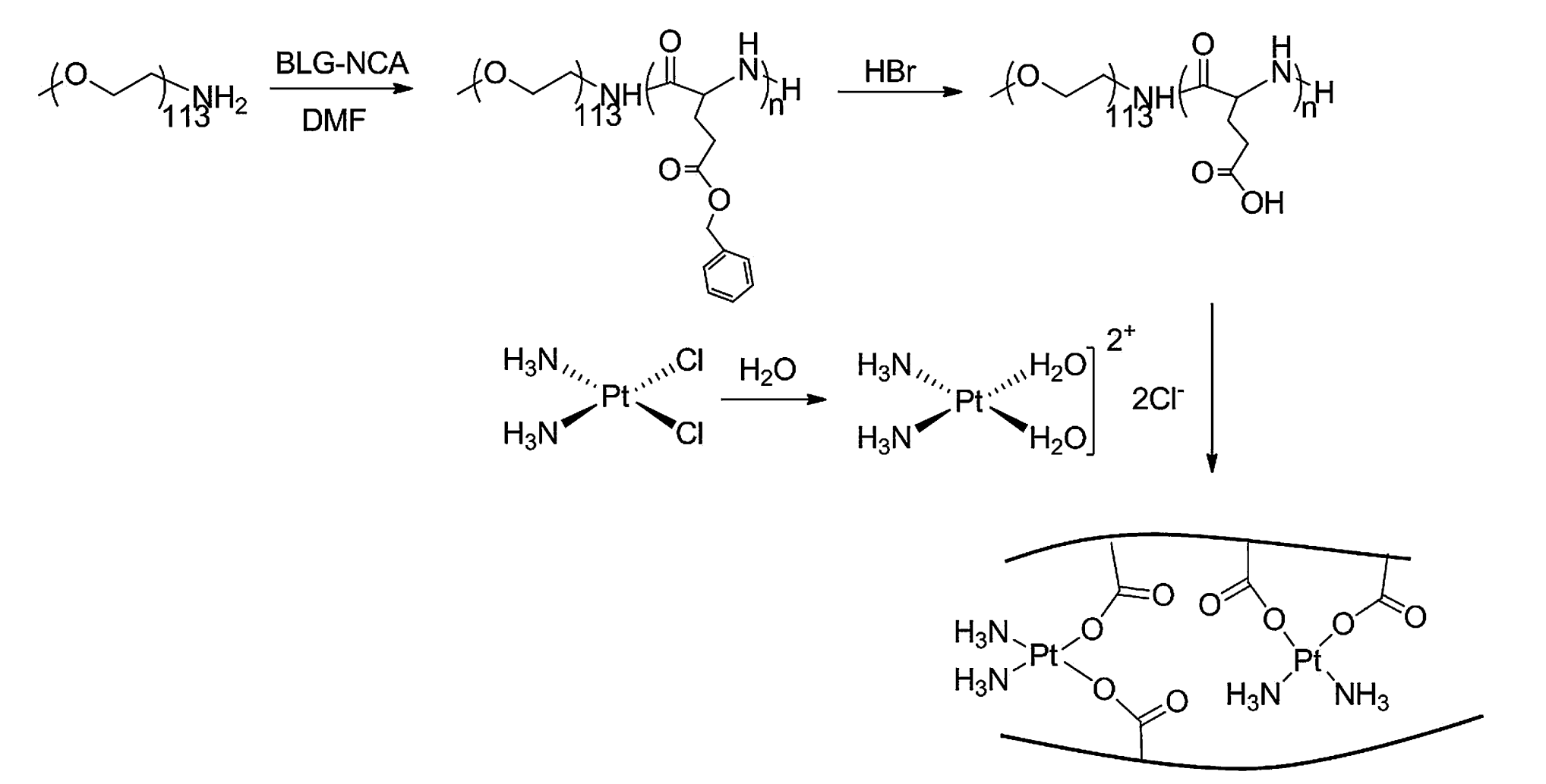 Methoxypoly(ethylene glycol)-block-Poly- (L-glutamic acid)-Loaded Cisplatin and a Combination With iRGD for the Treatment of Non-Small-Cell Lung Cancers