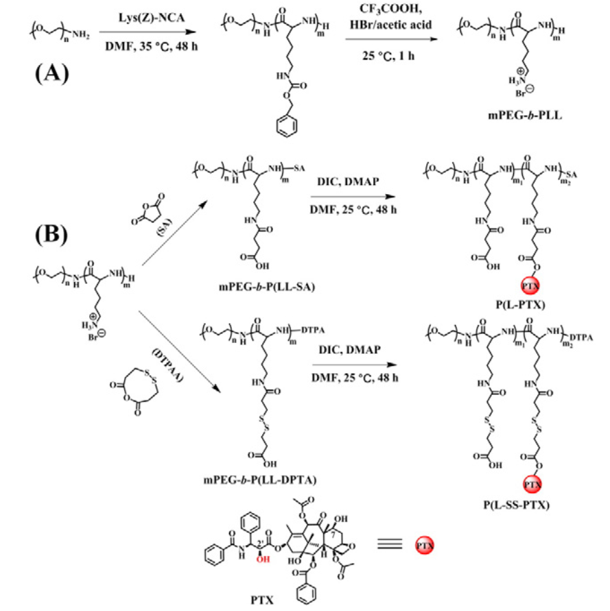 Well-defined polymer-drug conjugate engineered with redox and pH-sensitive release mechanism for efficient delivery of paclitaxel